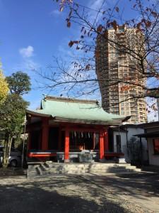 氷川神社2IMG_1079